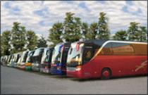 Piaţa de vânzare Used-Bus