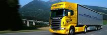 Piaţa de vânzare E.R. Function Trucks ApS