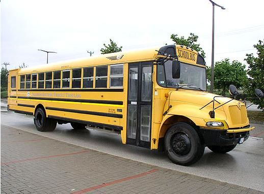 autobuz şcolar INTERNATIONAL IC 3 s 530 schoolbus