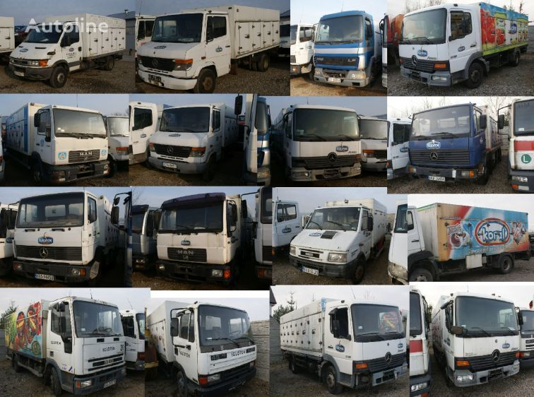 camion de distributie frigorifice MERCEDES-BENZ 814 1117  MAN 10-160 LE