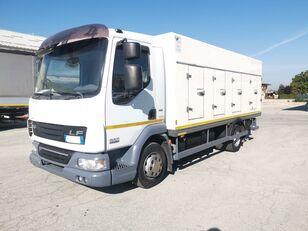 camion frigorific DAF 45.220 SURGELATI ATP 10/2024 - 120QLI