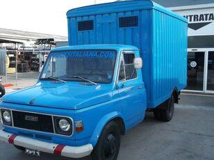 camion transport animale FIAT 616 N3/4 TRASPORTO BESTIAME ANIMALI VIVI