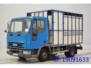 camion transport animale IVECO 65E14