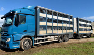 camion transport animale MERCEDES-BENZ Actros 2548 for pigs transport + remorcă transport animale