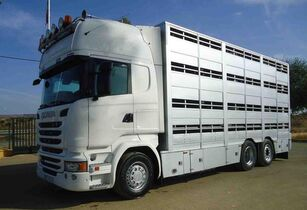 camion transport animale SCANIA R 490