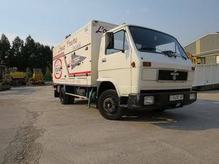 camion transport înghețată MAN 6100F