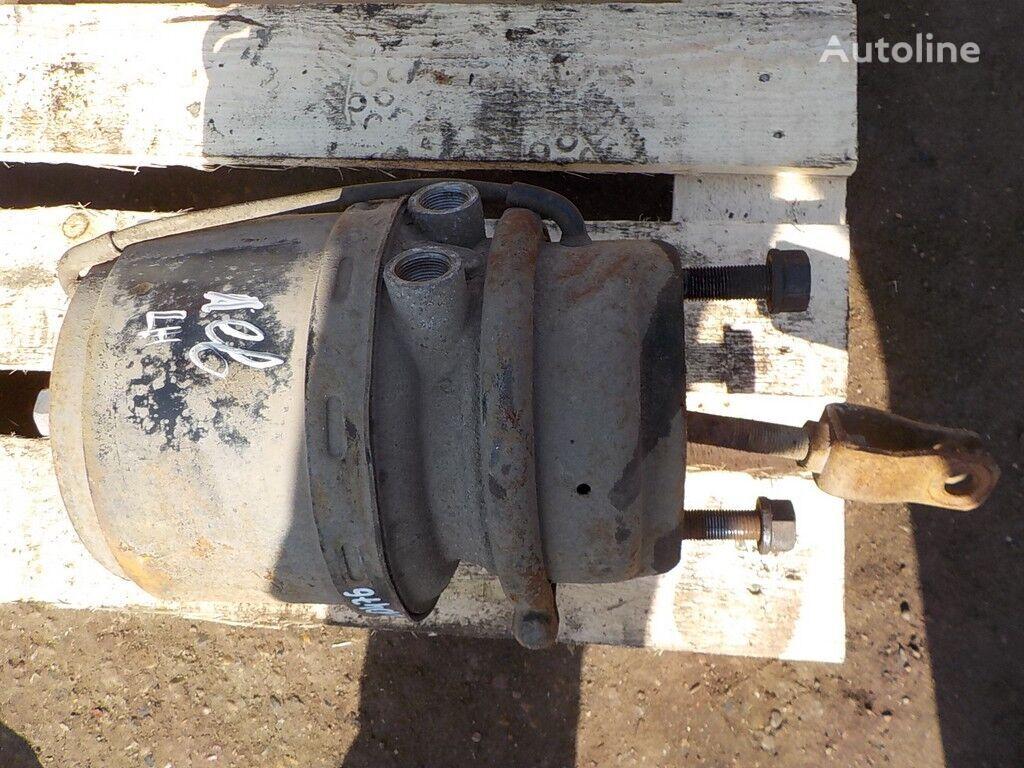 DAF Pruzhinnyy LH acumulator frână pentru DAF camion