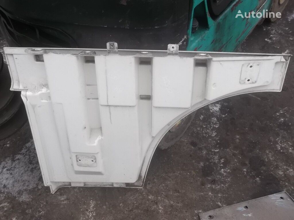 Nakladka dveri peredney pravoy DAF izolaţie pentru camion