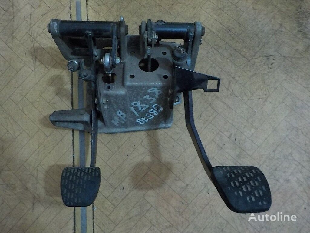 pepelnica panou cu dispozitive pentru DAF camion