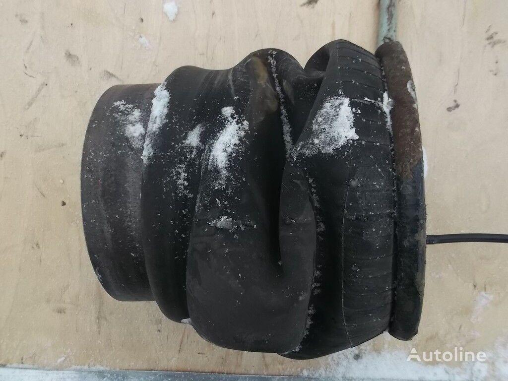 perna aer pentru MAN camion
