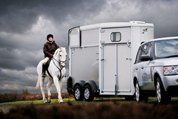 IFOR Williams HB511 remorcă transport cai